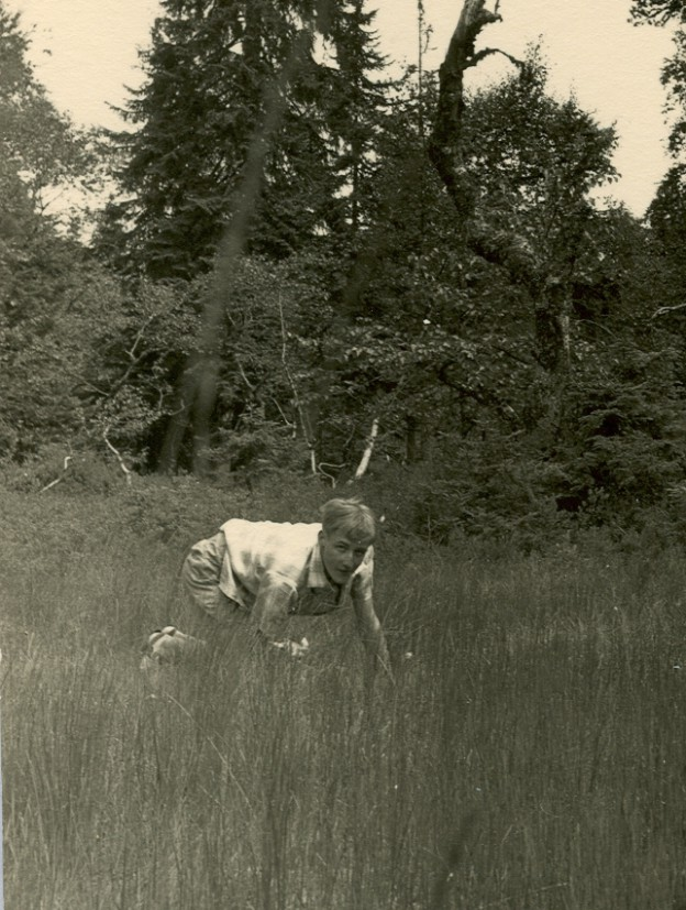 Im Feldseemoor (1959)